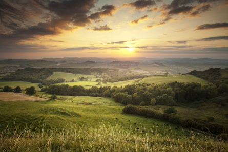 HARRIS LAMB TO HOST ECOLOGY WEBINARS TO BRING PLANNERS AND DEVELOPERS UP TO SPEED ON BIODIVERSITY AND ENVIRONMENTAL OBLIGATIONS