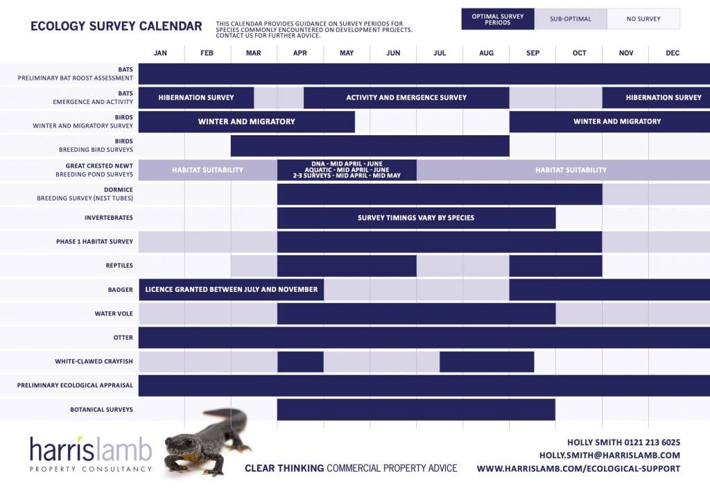 Ecology Survey Calendar